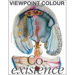 VIEWPOINT COLOUR N. 10